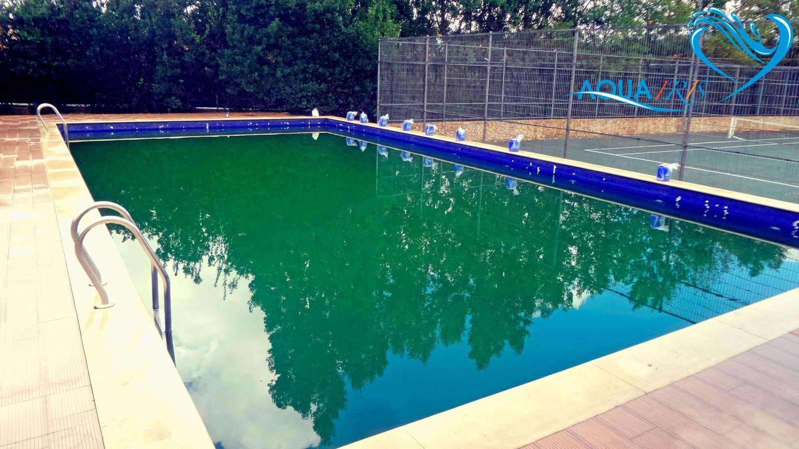 Tratamento da gua verde da piscina em manique servi os for Aclarar agua piscina verde